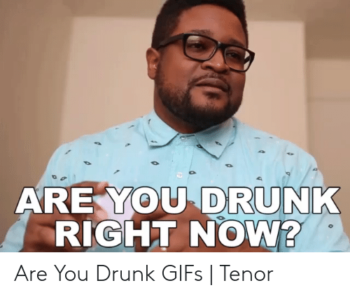 Drunk Gifs: DRUNK  ARE YOU  RIGHT NOW? Are You Drunk GIFs | Tenor