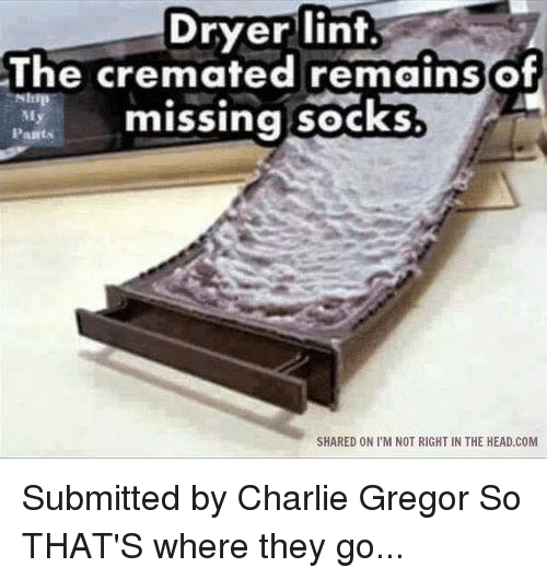 Missing Socks: Dryer lint.  Dryer The cremated remains  Pants  missing socks  My  SHARED ON I'M NOT RIGHT IN THE HEAD.COM Submitted by Charlie Gregor  So THAT'S where they go...