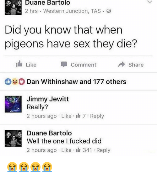 duane: Duane Bartolo  2 hrs Western Junction, TAS  Did you know that when  pigeons have sex they die?  Like  Share  Comment  O Dan Withinshaw and 177 others.  Jimmy Jewitt  Really?  2 hours ago Like 7 Reply  Duane Bartolo  Well the one I fucked did  2 hours ago Like 341 Reply 😭😭😭😭