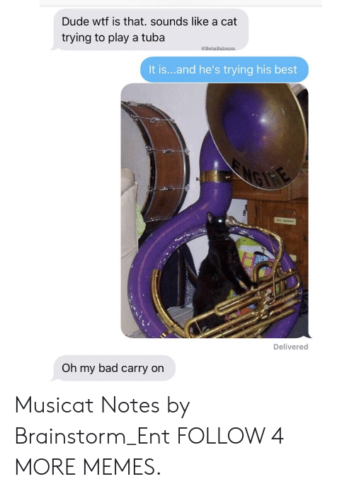 Wtf Is That: Dude wtf is that. sounds like a cat  trying to play a tuba  @BetaSalmon  It is...and he's trying his best  MGN  Delivered  Oh my bad carry on Musicat Notes by Brainstorm_Ent FOLLOW 4 MORE MEMES.