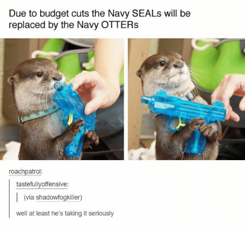 Otters: Due to budget cuts the Navy SEALs will be  replaced by the Navy OTTERS  roachpatrol  tastefullyoffensive:  (via shadowfogkiller)  well at least he's taking it seriously