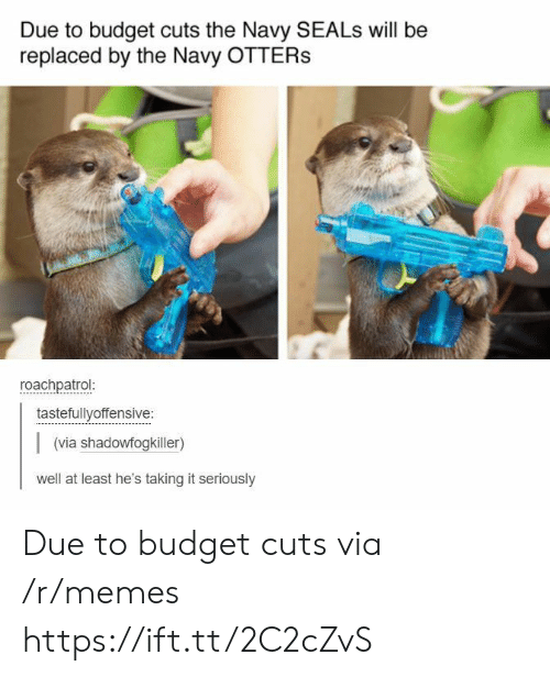 Otters: Due to budget cuts the Navy SEALs will be  replaced by the Navy OTTERS  roachpatrol  tastefullyoffensive:  (via shadowfogkiller)  well at least he's taking it seriously Due to budget cuts via /r/memes https://ift.tt/2C2cZvS