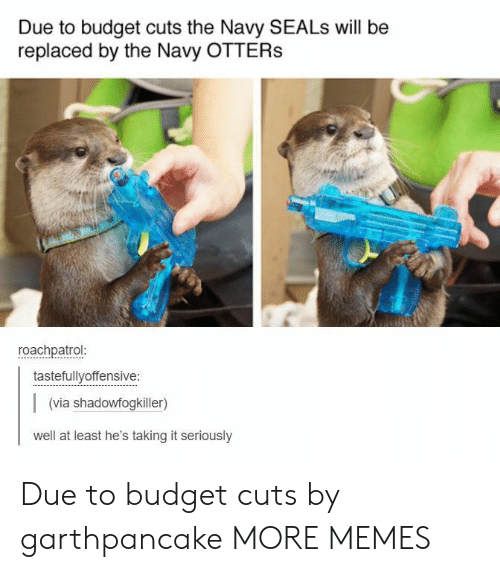 Otters: Due to budget cuts the Navy SEALs will be  replaced by the Navy OTTERS  roachpatrol  tastefullyoffensive:  (via shadowfogkiller)  well at least he's taking it seriously Due to budget cuts by garthpancake MORE MEMES
