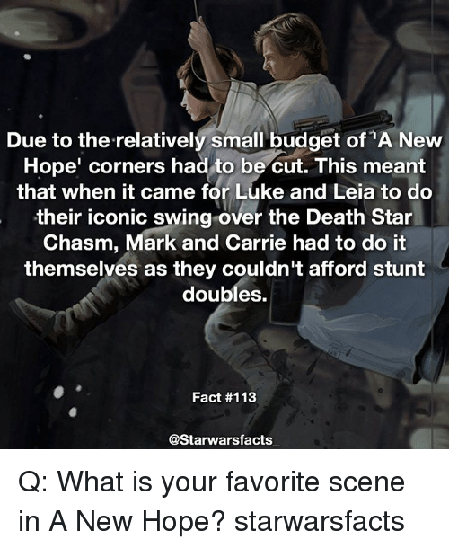 Death Star, Memes, and Budget: Due to the relatively small budget of A New  Hope' corners had to be cut. This meant  that when it came for Luke and Leia to do  their iconic swing over the Death Star  Chasm, Mark and Carrie had to do it  themselves as they couldn't afford stunt  doubles.  Fact #113  @Starwarsfacts Q: What is your favorite scene in A New Hope? starwarsfacts