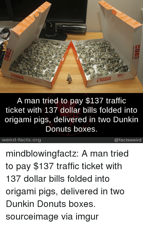Facts, Traffic, and Tumblr: DUNKIN  DONUTS  A man tried to pay $137 traffic  ticket with 137 dollar bills folded into  origami pigs, delivered in two Dunkin  Donuts boxes.  weird-facts.org  @factsweird mindblowingfactz:    A man tried to pay $137 traffic ticket with 137 dollar bills folded into origami pigs, delivered in two Dunkin Donuts boxes. sourceimage via imgur