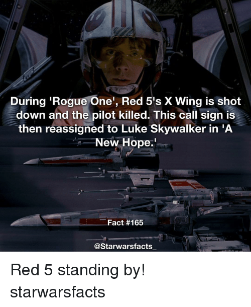 Luke Skywalker, Memes, and Rogue: During Rogue One', Red 5's X Wing is shot  down and the pilot killed. This call sign is  then reassigned to Luke Skywalker in A  New Hope.  Fact #165  @Starwarsfacts Red 5 standing by! starwarsfacts