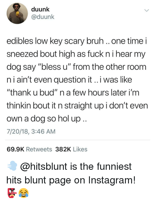 "nol: duunk  @duunk  edibles low key scary bruh ..one time i  sneezed bout high as fuck ni hear my  dog say ""bless u"" from the other room  n i ain't even question it..i was like  ""thank u bud"" n a few hours later i'm  thinkin bout it n straight up i don't even  own a dog so nol up  7/20/18, 3:46 AM  69.9K Retweets 382K Likes 💨 @hitsblunt is the funniest hits blunt page on Instagram! 👺😂"