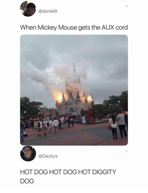 cord: @dxnielit  When Mickey Mouse gets the AUX cord  @Dazkys  HOT DOG HOT DOG HOT DIGGITY  DOG