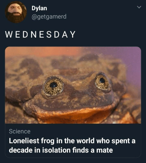 Science, World, and Who: Dylan  @getgamerd  WEDNESD AY  Science  Loneliest frog in the world who spent a  decade in isolation finds a mate