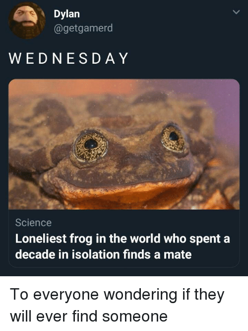 Science, World, and Who: Dylan  @getgamerod  WEDNESD AY  Science  Loneliest frog in the world who spent a  decade in isolation finds a mate To everyone wondering if they will ever find someone
