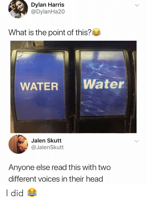 Head, Memes, and Water: Dylan Harris  @DylanHa20  What is the point of this?  WATER Water  Jalen Skutt  @JalenSkutt  Anyone else read this with two  different voices in their head I did 😂