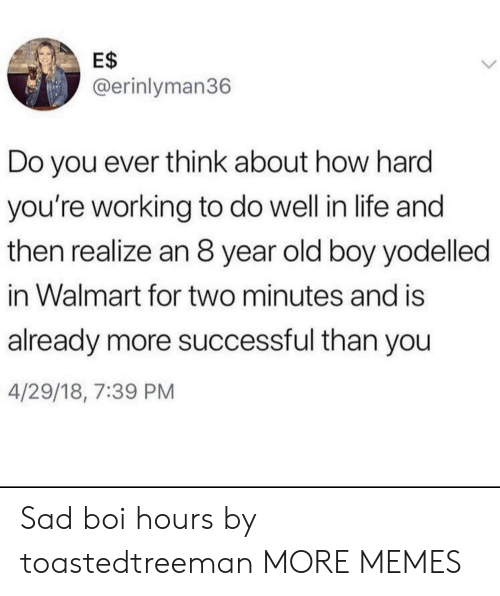 Dank, Life, and Memes: E$  @erinlyman36  Do you ever think about how hard  you're working to do well in life and  then realize an 8 year old boy yodelled  in Walmart for two minutes and is  already more successful than you  4/29/18, 7:39 PM Sad boi hours by toastedtreeman MORE MEMES