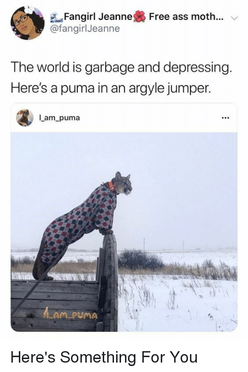 Puma, Free, and World: e-Fangirl Jeanne  @fangirlJeanne  Free as  s moth  The world is garbage and depressing  Here's a puma in an argyle jumper.  Iam puma  LAM PUMA Here's Something For You