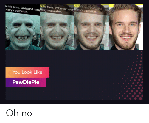 Voldemort, Education, and You: e his flaws Voldemort really  e his flaws, Voldemort really Harry's education.  te his flaws, Voldemort reallyHarry's education  Harry's education.  ভি  You Look Like  PewDiePie Oh no