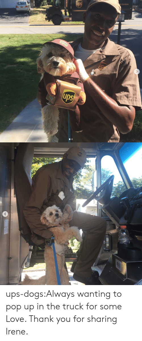 pop up: e Services ups-dogs:Always wanting to pop up in the truck for some Love. Thank you for sharing Irene.