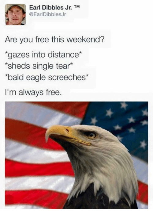 sheds: Earl Dibbles Jr. TM  @EarlDibblesJr  Are you free this weekend?  gazes into distance  sheds single tear*  bald eagle screeches*  I'm always free.