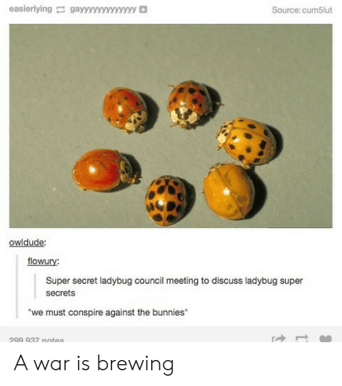 Bunnies: easierlyinggayyyyyyvyyyyy  Source: cum5lut  owidude:  flowury:  Super secret ladybug council meeting to discuss ladybug super  secrets  we must conspire against the bunnies  299 937 notes A war is brewing