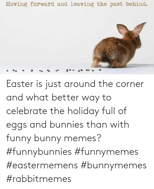 Easter: Easter is just around the corner and what better way to celebrate the holiday full of eggs and bunnies than with funny bunny memes? #funnybunnies #funnymemes #eastermemens #bunnymemes #rabbitmemes
