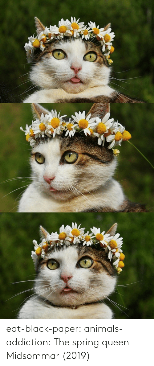 addiction: eat-black-paper:  animals-addiction: The spring queen   Midsommar (2019)