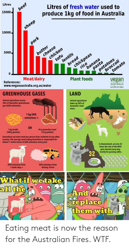 eating meat: Eating meat is now the reason for the Australian Fires. WTF.