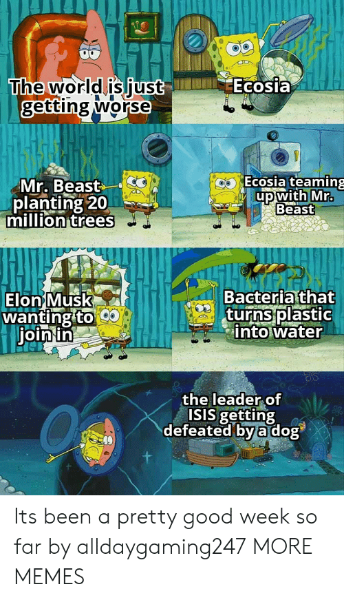 ISIS: Ecosia  The world is just  getting worse  Ecosia teaming  Mr. Beast  planting 20  million trees  up with Mr.  Beast  Bacteria that  turns plastic  into water  Elon Musk  wanting to  join in  the leader of  ISIS getting  defeated by a dog Its been a pretty good week so far by alldaygaming247 MORE MEMES