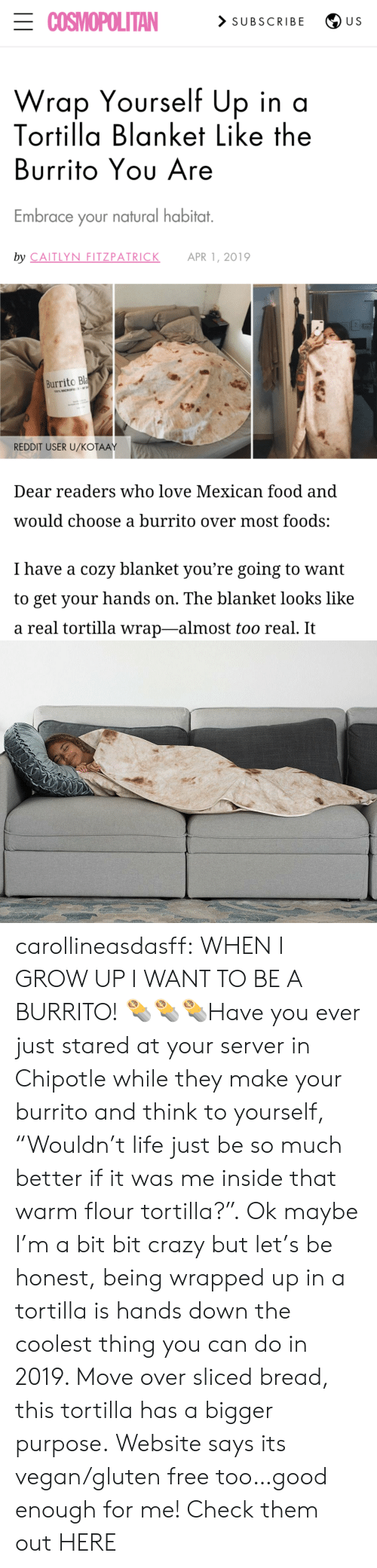 "server: ECOSMOPOLITAN  > SUBSCRIBE  U S  Wrap Yourself Up in a  Tortilla Blanket Like the  Burrito Yου Are  Embrace your natural habitat.  by CAITLYN FITZPATRICK  APR 1, 2019  Burrito Bla  100% MICROFE  REDDIT USER U/KOŤAAY  Dear readers who love Mexican food and  would choose a burrito over most foods:  I have a cozy blanket you're going to want  to get your hands on. The blanket looks like  a real tortilla wrap-almost too real. It carollineasdasff:  WHEN I GROW UP I WANT TO BE A BURRITO! 🌯🌯🌯Have you ever just stared at your server in Chipotle while they make your burrito and think to yourself, ""Wouldn't life just be so much better if it was me inside that warm flour tortilla?"". Ok maybe I'm a bit bit crazy but let's be honest, being wrapped up in a tortilla is hands down the coolest thing you can do in 2019. Move over sliced bread, this tortilla has a bigger purpose. Website says its vegan/gluten free too…good enough for me! Check them out HERE"