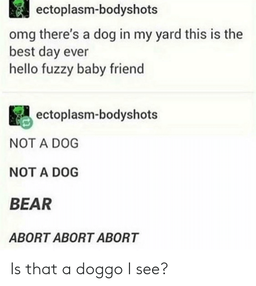 Hello, Omg, and Bear: ectoplasm-bodyshots  omg there's a dog in my yard this is the  best day ever  hello fuzzy baby friend  ectoplasm-bodyshots  NOT A DOG  NOT A DOG  BEAR  ABORT ABORT ABORT Is that a doggo I see?
