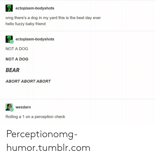 Hello, Omg, and Tumblr: ectoplasm-bodyshots  omg there's a dog in my yard this is the best day ever  hello fuzzy baby friend  ectoplasm-bodyshots  NOT A DOG  NOT A DOG  BEAR  ABORT ABORT ABORT  wexdarn  Rolling a 1 on a perception check Perceptionomg-humor.tumblr.com