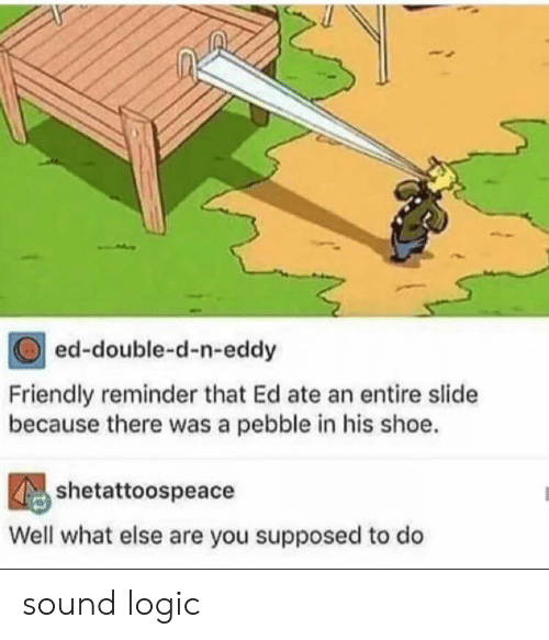 double d: ed-double-d-n-eddy  Friendly reminder that Ed ate an entire slide  because there was a pebble in his shoe.  shetattoospeace  Well what else are you supposed to do sound logic