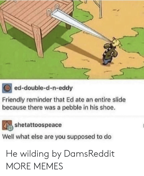 double d: ed-double-d-n-eddy  Friendly reminder that Ed ate an entire slide  because there was a pebble in his shoe.  shetattoospeace  Well what else are you supposed to do He wilding by DamsReddit MORE MEMES