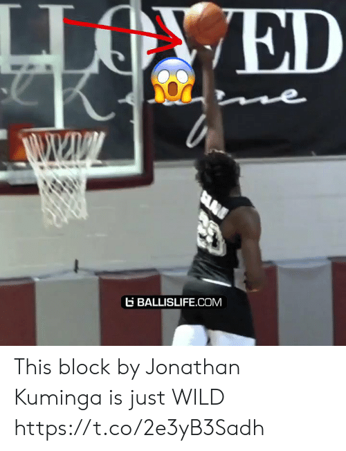 Memes, Wild, and 🤖: ED  ne  SLA  BALLISLIFE.COM This block by Jonathan Kuminga is just WILD https://t.co/2e3yB3Sadh