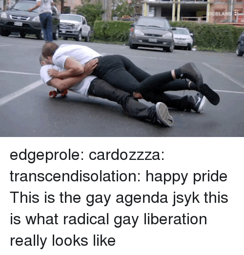 liberation: edgeprole:  cardozzza:  transcendisolation: happy pride  This is the gay agenda jsyk  this is what radical gay liberation really looks like