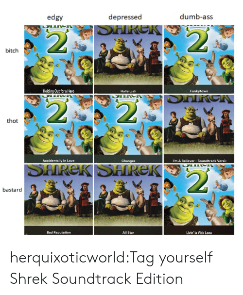 Hallelujah: edgy  depressed  dumb-ass  bitch  Holding Out for a Hero  Hallelujah  Funkytown  thot  Accidentally In Love  Changes  I'm A Believer - Soundtrack Versic  bastard  Bad Reputation  All Star  Livin' la Vida Loca herquixoticworld:Tag yourself Shrek Soundtrack Edition