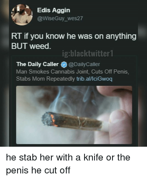 Memes, Weed, and Penis: Edis Aggin  @WiseGuy_wes27  RT if you know he was on anything  BUT weed.  ig:blacktwitter 1  The Daily Caller@@DailyCaller  Man Smokes Cannabis Joint, Cuts Off Penis,  Stabs Mom Repeatedly trib.al/lciGwoq he stab her with a knife or the penis he cut off