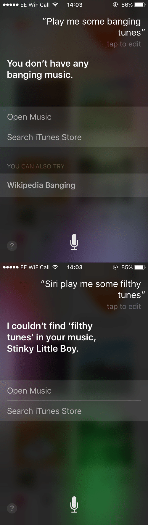 """Itunes Store: EE WiFiCall14:03  86%  """"Play me some banging  tunes  tap to edit  You don't have any  banging music.  Open Music  Search iTunes Store  YOU CAN ALSO TRY  Wikipedia Banging   EE WiFiCall14:03  ④ 85%  """"Siri play me some filthy  tunes  tap to edit  l couldn't find 'filthy  tunes' in your music,  Stinky Little Boy.  Open Music  Search iTunes Store"""