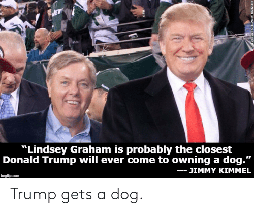 """lindsey graham: eebo  """"Lindsey Graham is probably the closest  Donald Trump will ever come to owning a dog.""""  JIMMY KIMMEL  imgflip.com Trump gets a dog."""