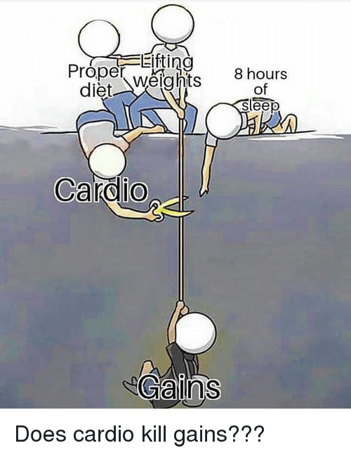 Memes, Diet, and Sleep: Efti  Proper weights  diet Weights 8 hours  of  sleep  Gains Does cardio kill gains???