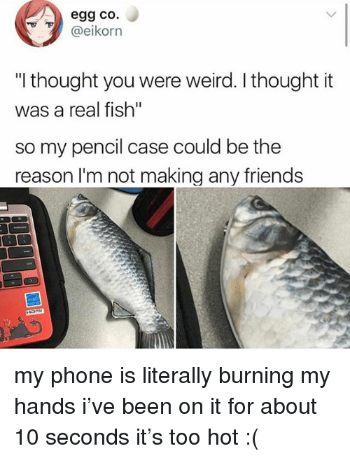 "Friends, Ironic, and Phone: egg co.  @eikorn  ""I thought you were weird. I thought it  was a real fish""  so my pencil case could be the  reason l'm not making any friends  Ham my phone is literally burning my hands i've been on it for about 10 seconds it's too hot :("