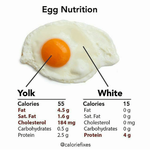 Memes Protein And Cholesterol Egg Nutrition Yolk White  Calories 4 5