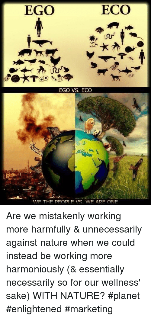 eco: EGO  ECO  EGO VS. ECO Are we mistakenly working more harmfully & unnecessarily against nature when we could instead be working more harmoniously (& essentially necessarily so for our wellness' sake) WITH NATURE? #planet #enlightened #marketing
