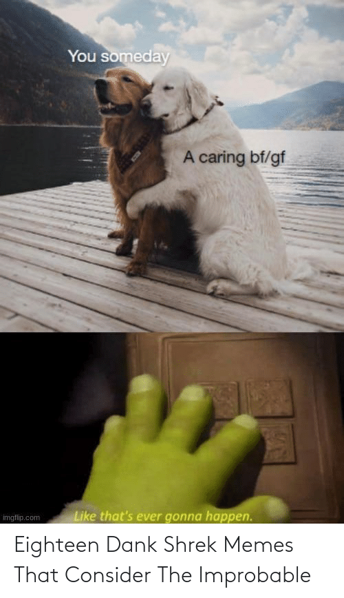 Shrek: Eighteen Dank Shrek Memes That Consider The Improbable