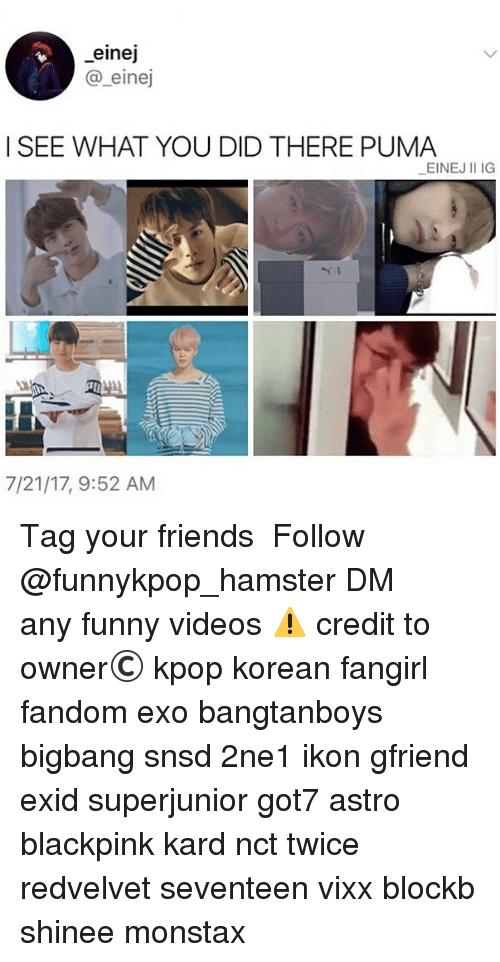 Friends, Funny, and Memes: einej  SEE WHAT YOU DID THERE PUMA  EINEJ II IG  7/21/17, 9:52 AM 》Tag your friends 》》 Follow @funnykpop_hamster 》》》DM any funny videos ⚠ credit to owner© kpop korean fangirl fandom exo bangtanboys bigbang snsd 2ne1 ikon gfriend exid superjunior got7 astro blackpink kard nct twice redvelvet seventeen vixx blockb shinee monstax