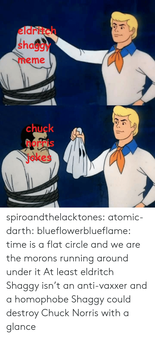 Chuck Norris: eldritch  shaggy  meme  chuck  norris  jokes spiroandthelacktones: atomic-darth:  blueflowerblueflame: time is a flat circle and we are the morons running around under it  At least eldritch Shaggy isn't an anti-vaxxer and a homophobe   Shaggy could destroy Chuck Norris with a glance