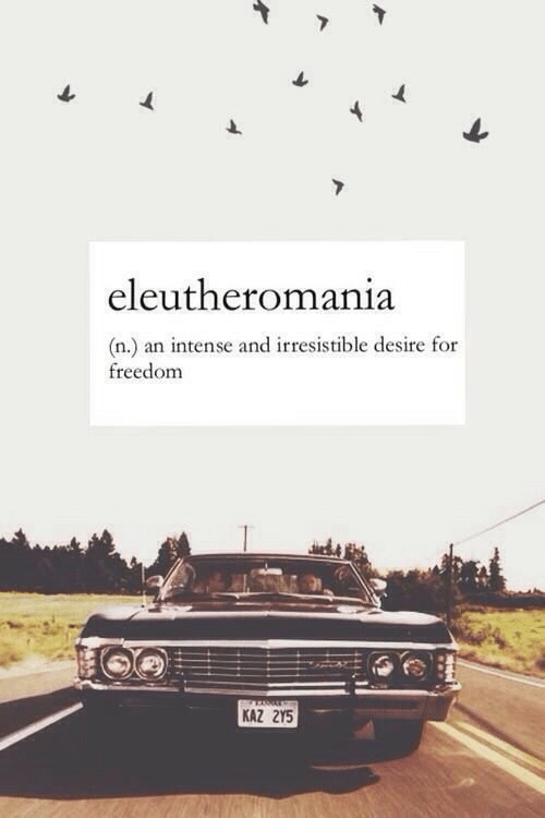Freedom, For, and Desire: eleutheromania  (n.) an intense and irresistible desire for  freedom  KAZ 2Y5