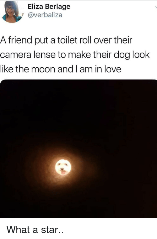 roll over: Eliza Berlage  @verbaliza  A friend put a toilet roll over their  camera lense to make their dog look  like the moon and I am in love What a star..