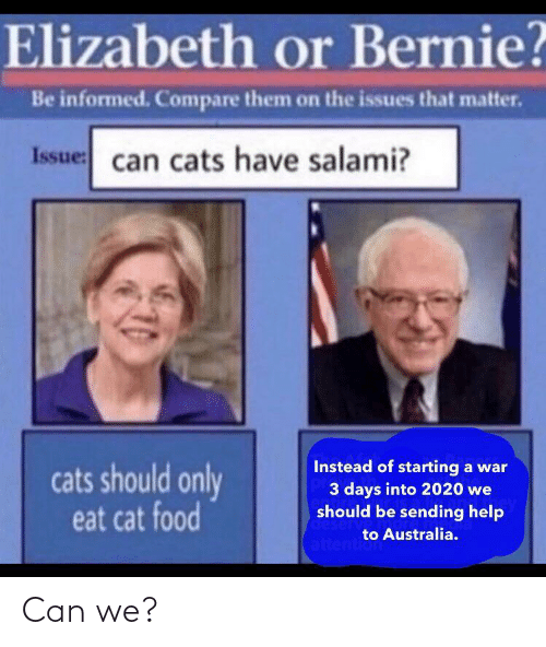Food: Elizabeth or Bernie?  Be informed. Compare them on the issues that matter.  Issue: can cats have salami?  Instead of starting a war  3 days into 2020 we  should be sending help  cats should only  eat cat food  deserv  to Australia.  attention Can we?
