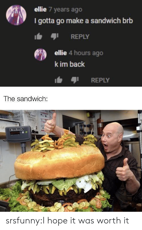 Target, Tumblr, and Blog: ellie 7 years ago  I gotta go make a sandwich brb  REPLY  ellie 4 hours ago  k im back  REPLY  The sandwich:  M Sur C srsfunny:I hope it was worth it