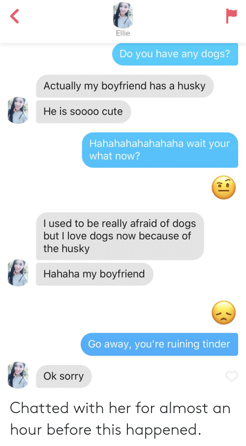 Hahahahahahahaha: Ellie  Do you have any dogs?  Actually my boyfriend has a husky  He is soooo cute  Hahahahahahahaha wait your  what now?  I used to be really afraid of dogs  but I love dogs now because of  the husky  Hahaha my boyfrienc  Go away, you're ruining tinder  Ok sorry Chatted with her for almost an hour before this happened.
