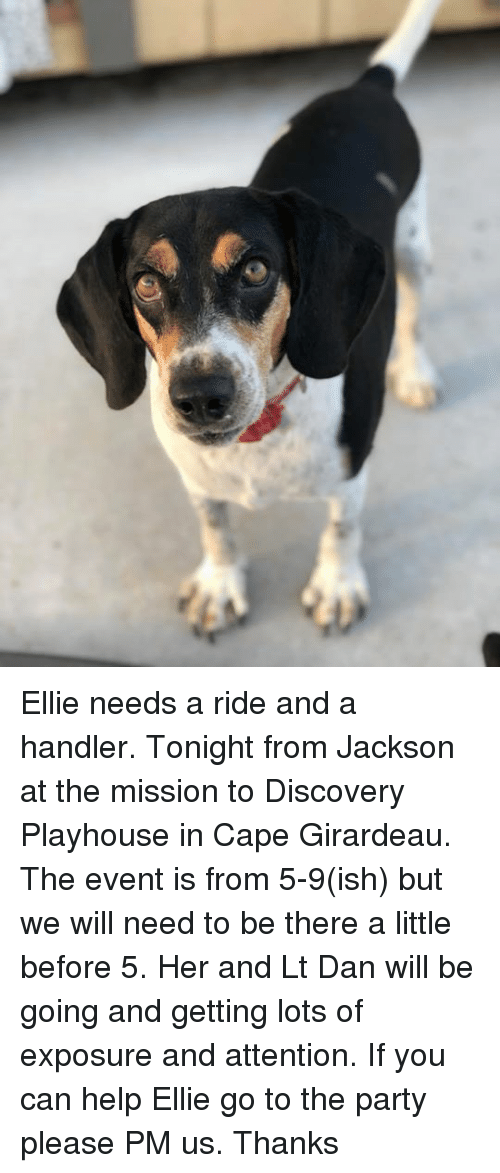 Girardeau: Ellie needs a ride and a handler. Tonight from Jackson at the mission to Discovery Playhouse in Cape Girardeau. The event is from 5-9(ish) but we will need to be there a little before 5. Her and Lt Dan will be going and getting lots of exposure and attention. If you can help Ellie go to the party please PM us. Thanks