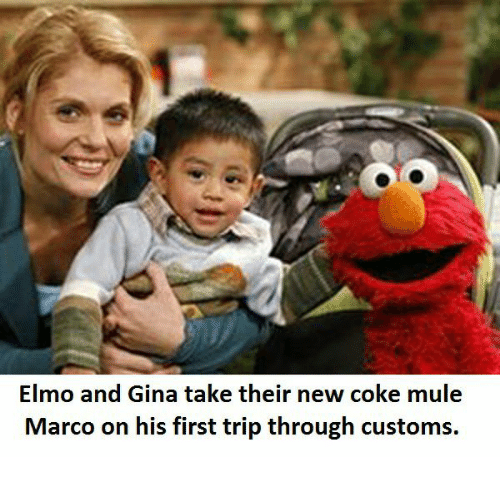 Elmo And Gina Take Their New Coke Mule Marco On His First Trip